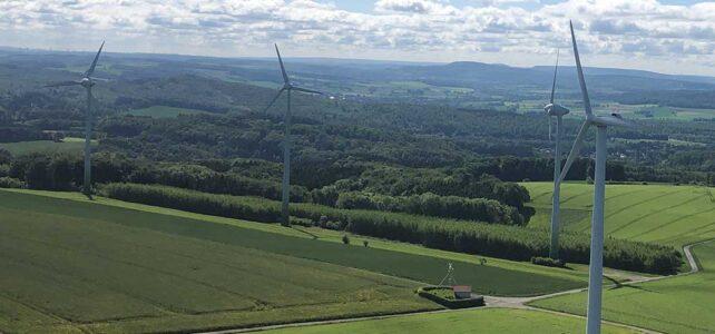 Blick auf einen Windpark